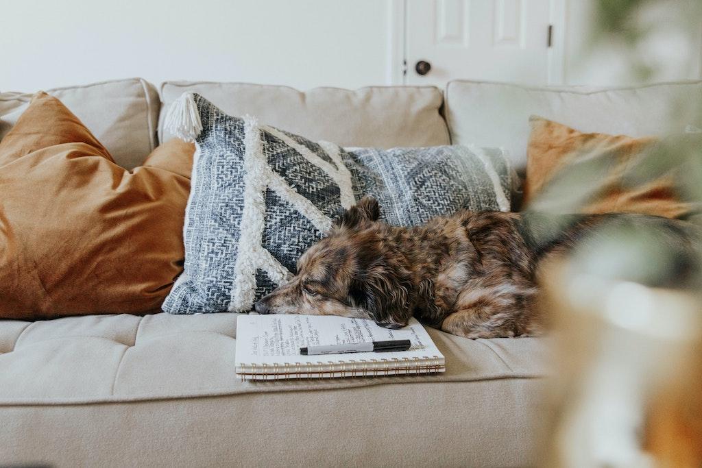 Alternatives Lebensziel: Langeweile